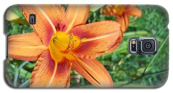Tiger Lily Galaxy S5 Case by Yolanda Raker