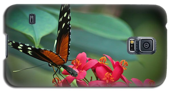Tiger Longwing Butterfly Galaxy S5 Case