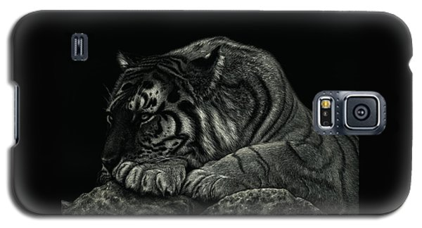 Tiger Power At Peace Galaxy S5 Case
