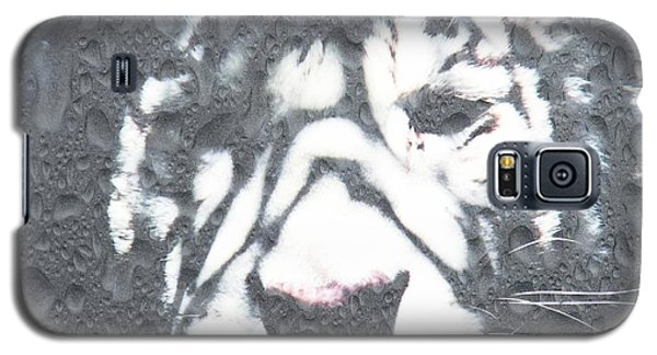 Galaxy S5 Case featuring the photograph Tiger Rain by Amanda Eberly-Kudamik