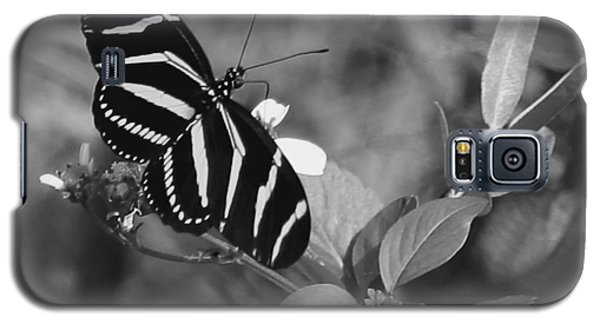 Tiger Stripe Butterfly Galaxy S5 Case