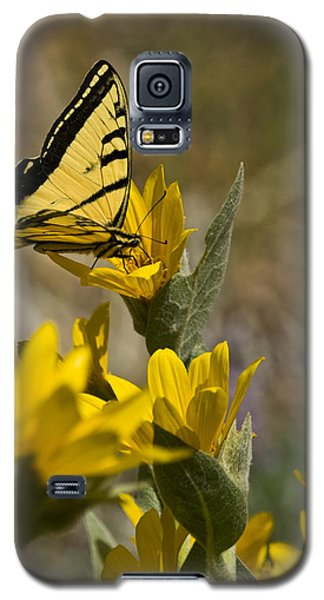 Galaxy S5 Case featuring the photograph Tiger Swallowtail Butterfly by Janis Knight