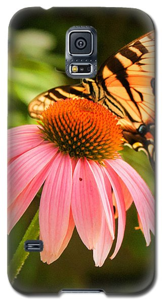 Tiger Swallowtail Feeding Galaxy S5 Case