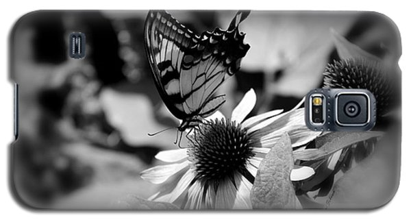Galaxy S5 Case featuring the photograph Tiger Swallowtail In Black And White by Yumi Johnson