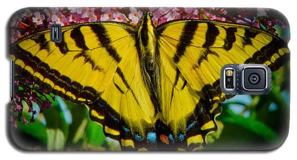 Galaxy S5 Case featuring the photograph Tiger Swallowtail  by Janis Knight