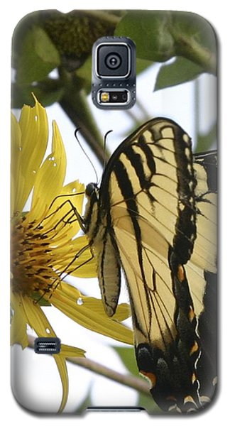 Tiger Swallowtail Galaxy S5 Case