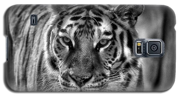 Tiger Tiger Monochrome Galaxy S5 Case