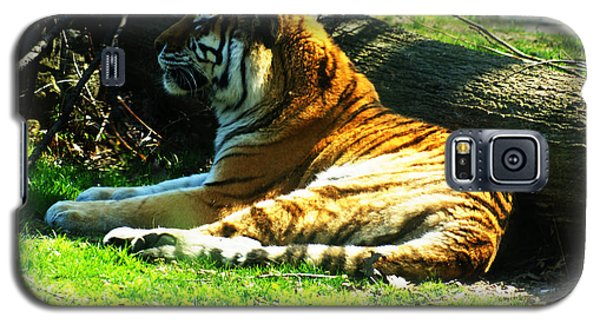 Galaxy S5 Case featuring the photograph Tiger Too by B Wayne Mullins