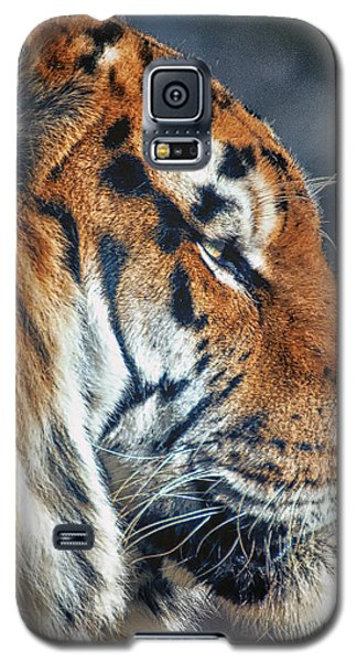 Tiger Watch Galaxy S5 Case