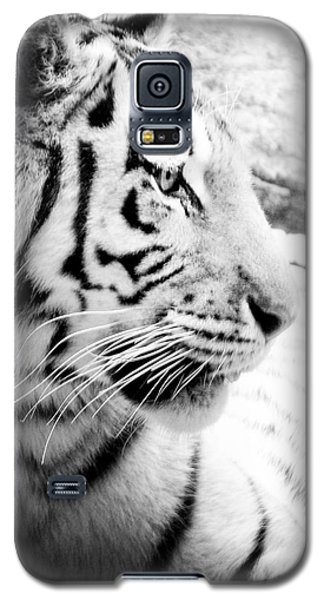 Galaxy S5 Case featuring the photograph Tiger Watch by Erika Weber