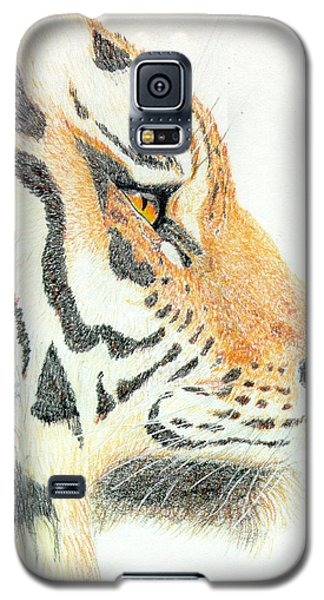 Galaxy S5 Case featuring the drawing Tiger's Head by Stephanie Grant