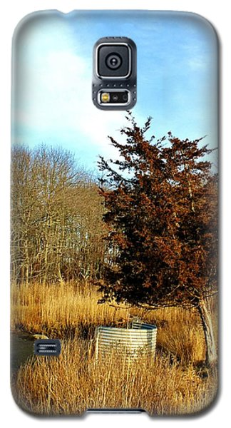 Tilted Tree  Galaxy S5 Case