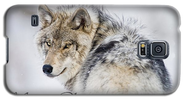 Timber Wolf Christmas Card 2 Galaxy S5 Case