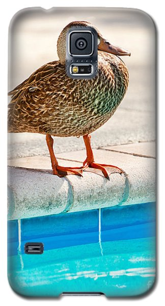 Time For A Dip II Galaxy S5 Case
