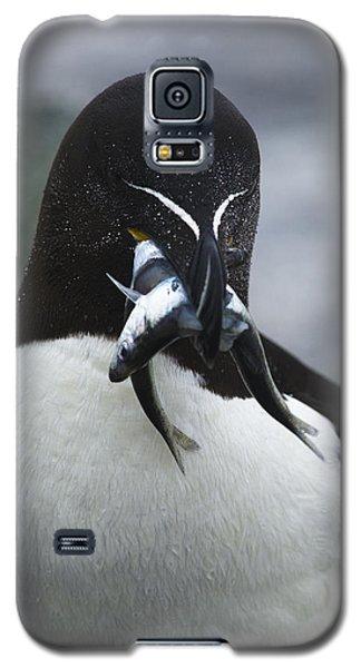 Feeding Time... Galaxy S5 Case by Nina Stavlund