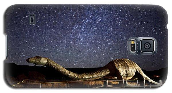 Timeless Beauty Galaxy S5 Case