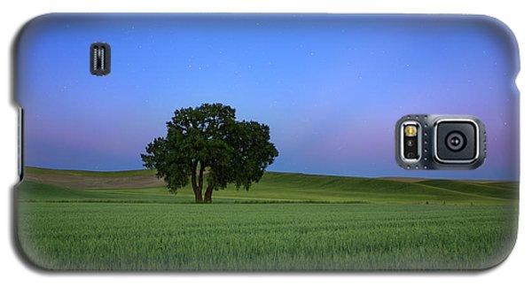 Timeless Evening Galaxy S5 Case