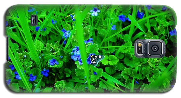 Galaxy S5 Case featuring the photograph Tiny Butterfly by Sherman Perry