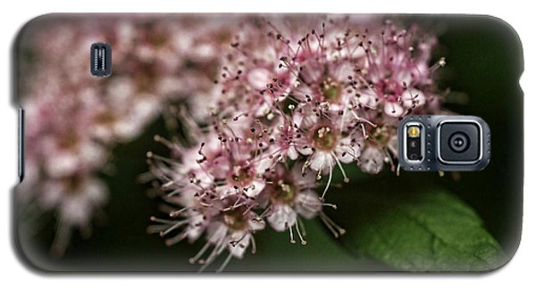 Tiny Flowers Galaxy S5 Case