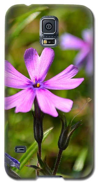 Tiny Purple Flower #1 Galaxy S5 Case