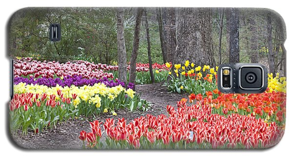 Galaxy S5 Case featuring the photograph Tiptoe Thru The Tulips by Robert Camp