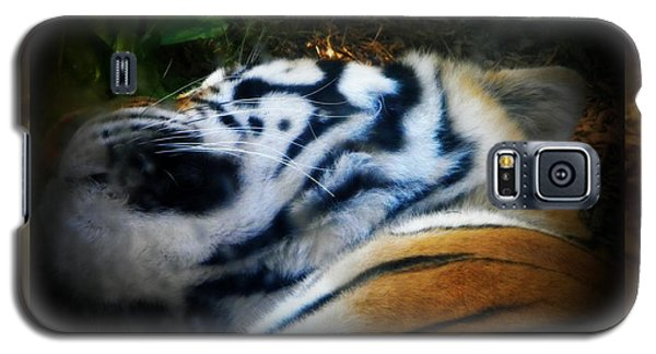 Tired Tiger Galaxy S5 Case