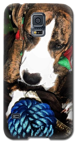 Galaxy S5 Case featuring the photograph 'tis Better To Receive by Robert McCubbin