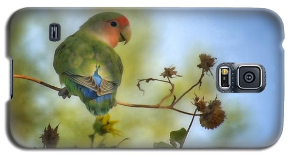 Lovebird Galaxy S5 Case - To Love A Lovebird by Saija  Lehtonen