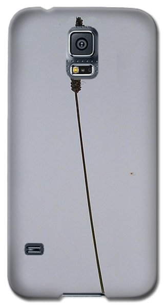 Galaxy S5 Case featuring the photograph To Stand Alone by Rand Swift