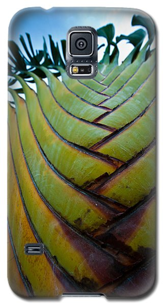 Galaxy S5 Case featuring the photograph To The Sky by Sebastian Musial