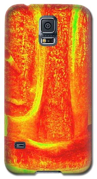 Todays Tiki Galaxy S5 Case