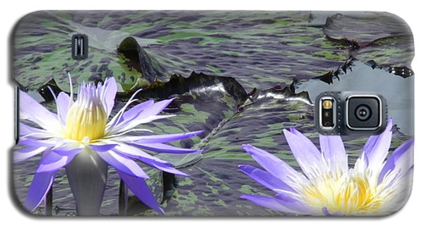 Galaxy S5 Case featuring the photograph Together Is Beauty by Chrisann Ellis