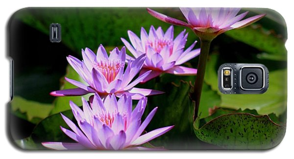 Together We Bloom - Violet Lily Galaxy S5 Case