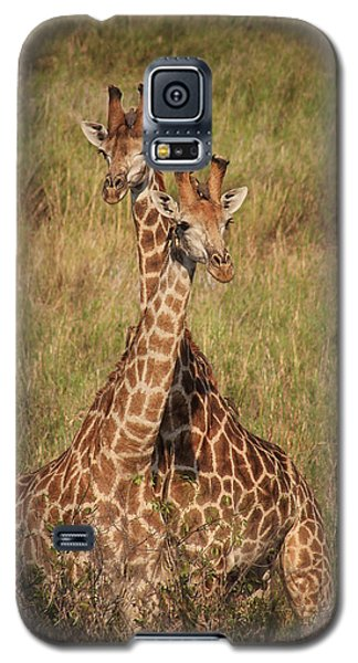 Galaxy S5 Case featuring the photograph Togetherness by Kim Andelkovic