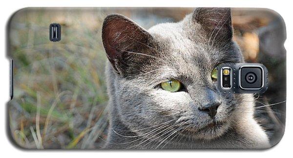 Tom Cat Galaxy S5 Case