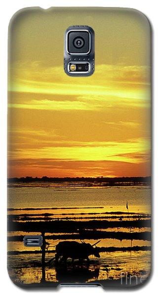 Tonle Sap Sunrise 02 Galaxy S5 Case