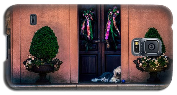 Too Hot To Fetch Galaxy S5 Case by Melinda Ledsome