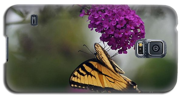 Galaxy S5 Case featuring the photograph Topsy Turvy by Judy Wolinsky