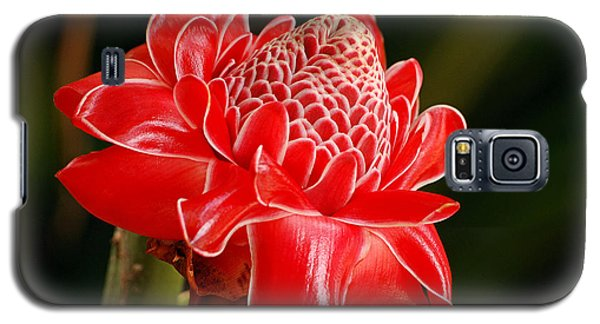 Galaxy S5 Case featuring the photograph Torch Ginger by Lorenzo Cassina