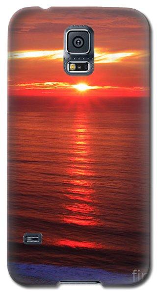 Torrey Pines Starburst Galaxy S5 Case
