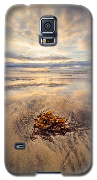 Galaxy S5 Case featuring the photograph Torrey Pines Sunset by Alexander Kunz