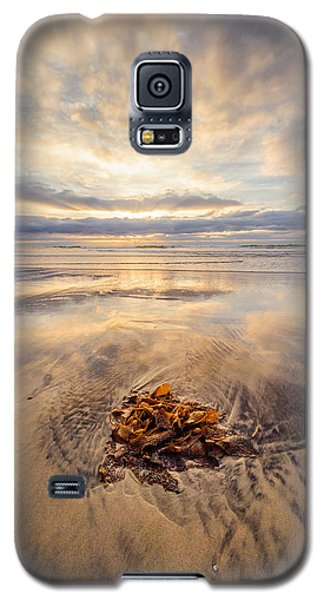 Torrey Pines Sunset Galaxy S5 Case