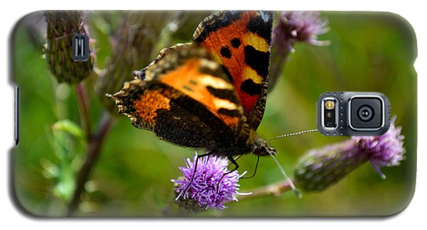 Tortoise Shell Butterfly Galaxy S5 Case