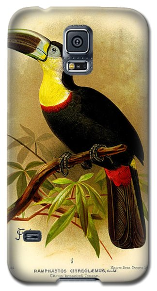 Toucan Galaxy S5 Case - Toucan by Dreyer Wildlife Print Collections