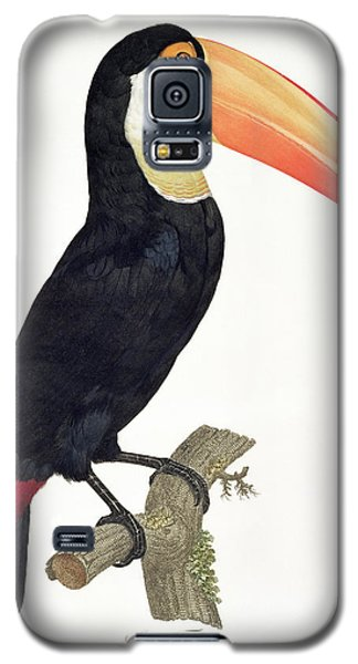 Toucan Galaxy S5 Case by Jacques Barraband