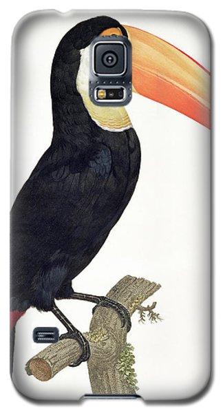Toucan Galaxy S5 Case - Toucan by Jacques Barraband