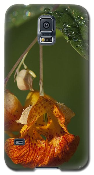 Touch Me Not.. Galaxy S5 Case by Nina Stavlund