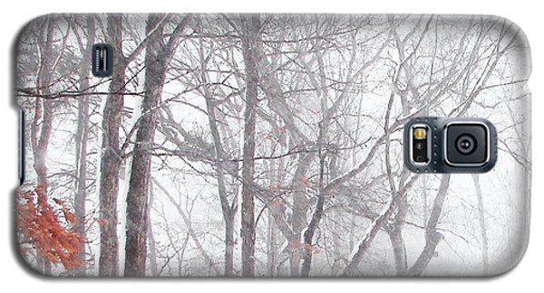 Touch Of Fall In Winter Fog Galaxy S5 Case