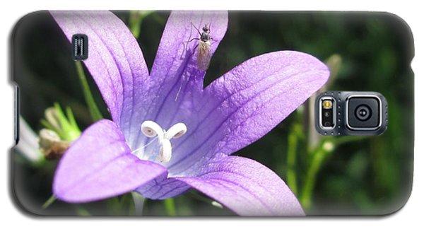 Touchdown  Galaxy S5 Case by Martin Howard