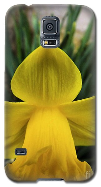 Galaxy S5 Case featuring the photograph Touched By An Angel by Robyn King